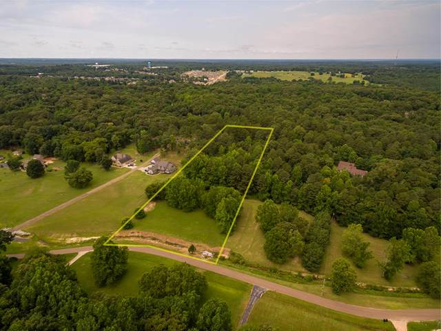 712 Long Meadow Drive, OXFORD, MS 38655 (MLS #148560) :: Cannon Cleary McGraw