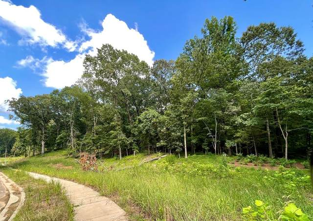 TBD Zilla Avent Dr. Lot 6, OXFORD, MS 38655 (MLS #148575) :: Cannon Cleary McGraw