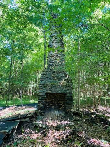 TBD Hwy 30(Lafayette County), Etta, MS 38627 (MLS #148619) :: Cannon Cleary McGraw