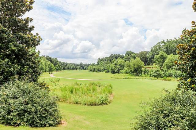 3856 Majestic Oaks Dr, OXFORD, MS 38655 (MLS #148644) :: Cannon Cleary McGraw