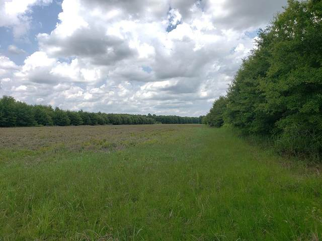1 Bobo Rd, BATESVILLE, MS 38606 (MLS #148662) :: Cannon Cleary McGraw