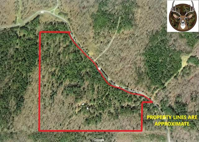 2225 Cr 94, WATER VALLEY, MS 38965 (MLS #148664) :: Cannon Cleary McGraw