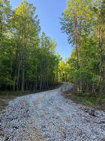 29 Cr 438, OXFORD, MS 38655 (MLS #149000) :: John Welty Realty