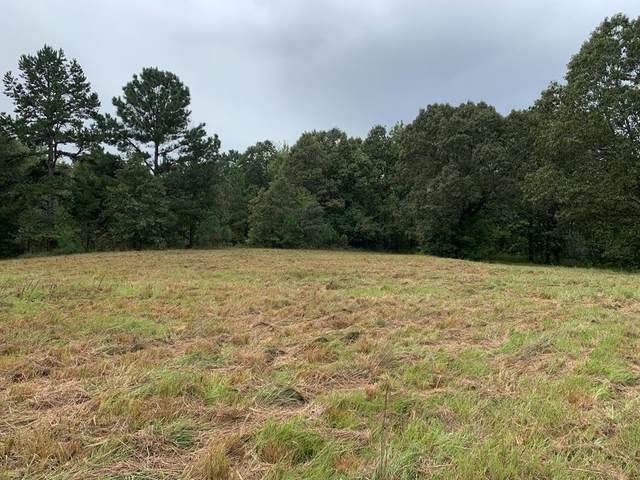 1359 Cr 87, COFFEEVILLE, MS 38922 (MLS #149043) :: Cannon Cleary McGraw