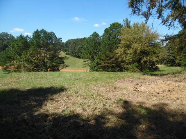 2821 Cold Springs Road, BATESVILLE, MS 38606 (MLS #149067) :: Cannon Cleary McGraw