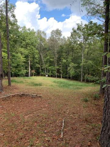 5102 Nevis Drive, OXFORD, MS 38655 (MLS #149196) :: Oxford Property Group