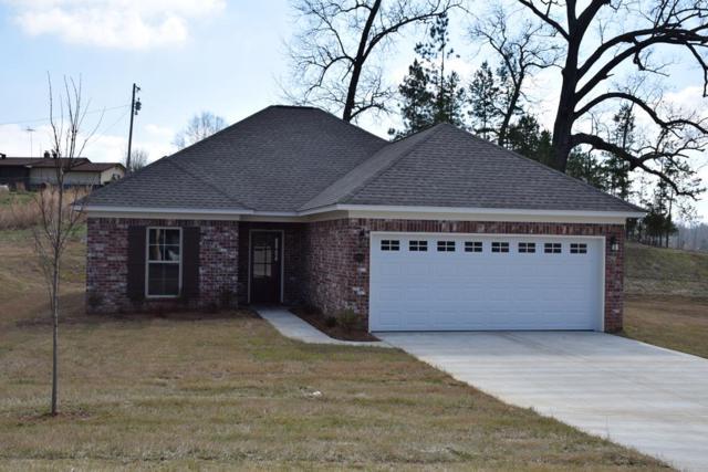 1067 Pebble Creek Drive, OXFORD, MS 38655 (MLS #142682) :: Oxford Property Group