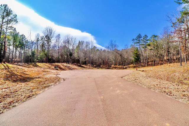 206 Philippians Drive, OXFORD, MS 38655 (MLS #147498) :: John Welty Realty