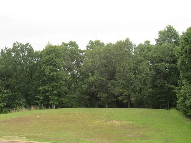 2002 Highlands Circle, OXFORD, MS 38655 (MLS #148713) :: Oxford Property Group
