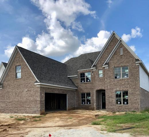 676 Centerpointe Cove, OXFORD, MS 38655 (MLS #140684) :: John Welty Realty