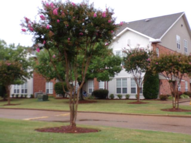 202 Private Road, OXFORD, MS 38655 (MLS #140967) :: John Welty Realty
