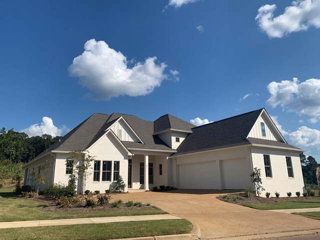 229 Persimmon Lane, OXFORD, MS 38655 (MLS #142384) :: Oxford Property Group