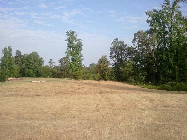 tbd Woodland Rd - Photo 1