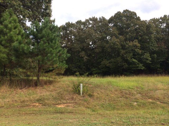 151 Fox Trail Run, OXFORD, MS 38655 (MLS #132586) :: John Welty Realty