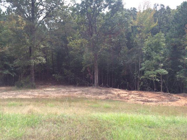 161 Fox Trail Run, OXFORD, MS 38655 (MLS #132590) :: John Welty Realty
