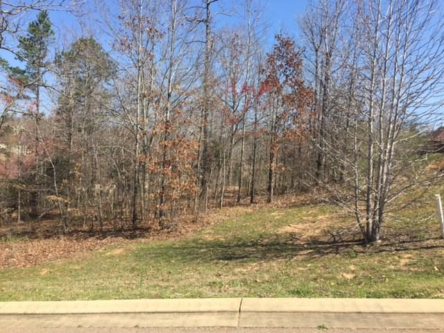 405 Andalusia Drive, OXFORD, MS 38655 (MLS #137970) :: John Welty Realty