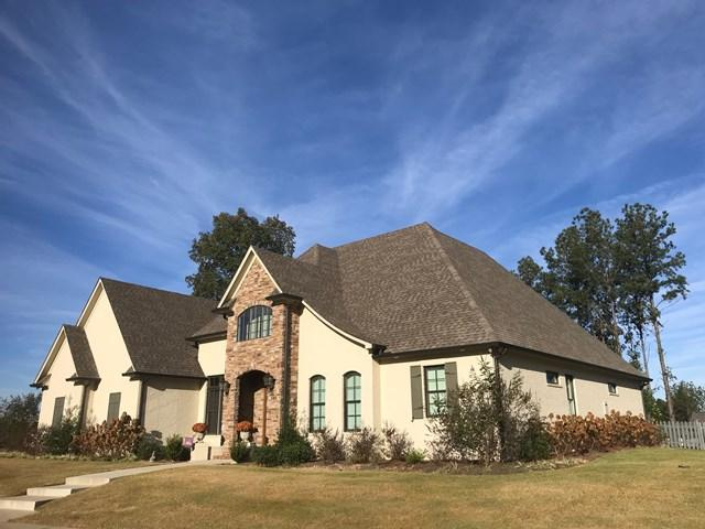 505 Fazio Drive, OXFORD, MS 38655 (MLS #139230) :: John Welty Realty