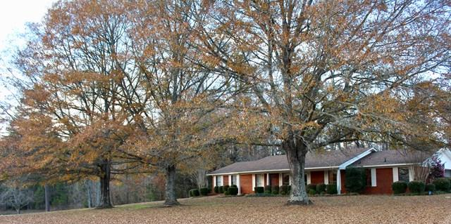 7689 Old Highway 9, Blue Springs, MS 38828 (MLS #139438) :: John Welty Realty