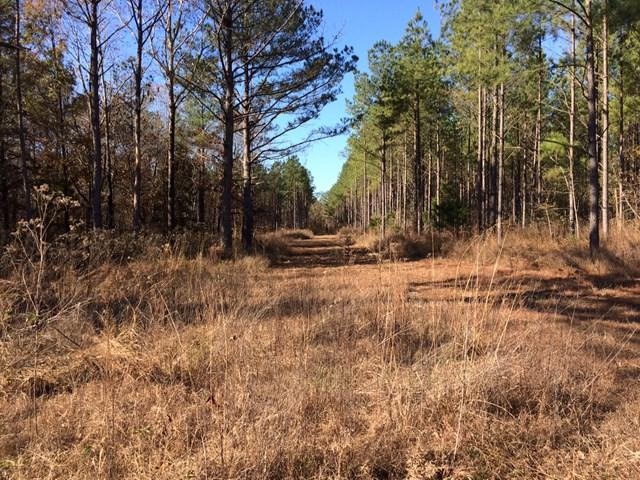 0 West Oxford Loop Extended, OXFORD, MS 38655 (MLS #139468) :: John Welty Realty