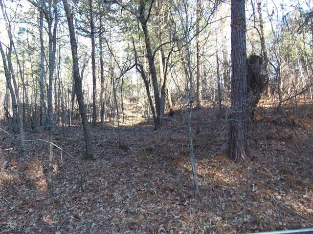 TBD Cr 223, OXFORD, MS 38655 (MLS #139473) :: John Welty Realty
