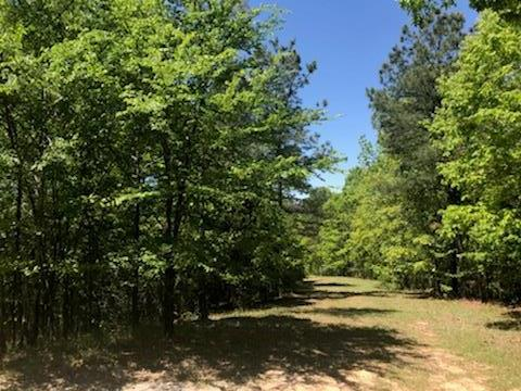 3004 Highlands Circle, OXFORD, MS 38655 (MLS #140368) :: John Welty Realty