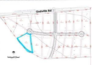 Lot 11 Endville Rd - Photo 1