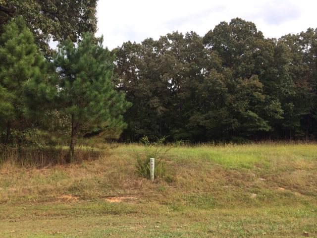 151 Fox Trail Run, OXFORD, MS 38655 (MLS #143966) :: Oxford Property Group