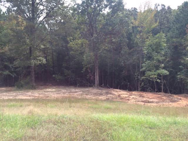161 Fox Trail Run, OXFORD, MS 38655 (MLS #143967) :: Oxford Property Group