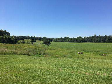 474 County Road 444, OXFORD, MS 38655 (MLS #144168) :: Oxford Property Group