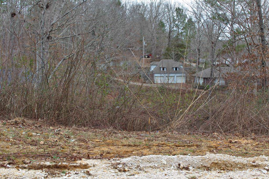 Lot 25 Spring Hollow - Photo 1