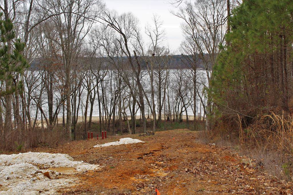 Lot A Spring Hollow - Photo 1