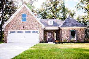 163 River Run, OTHER, MS 38801 (MLS #145200) :: Oxford Property Group