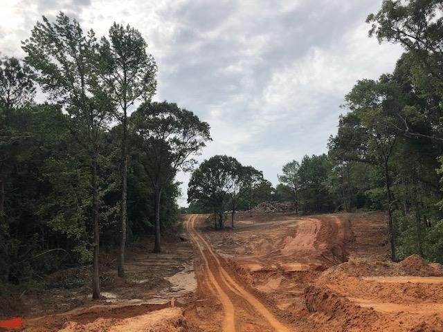 Lot 93 Greenhaven Drive, OXFORD, MS 38655 (MLS #146440) :: Cannon Cleary McGraw