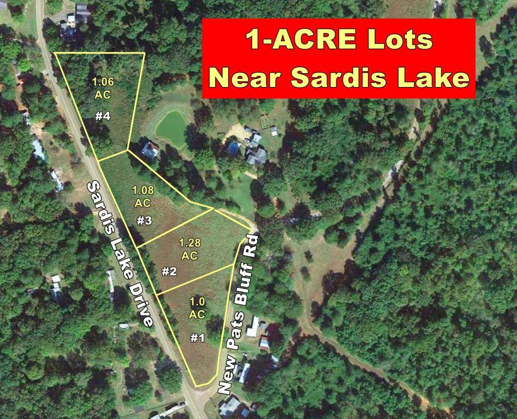 lot 2 Sardis Lake Drive - Photo 1
