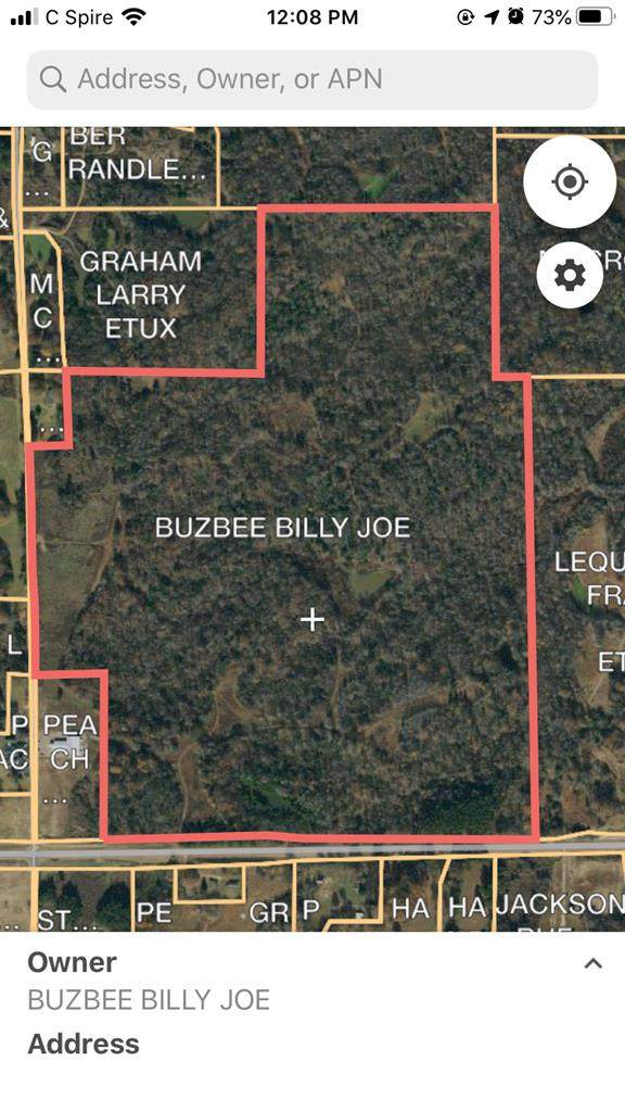 0 Hwy 315, SARDIS, MS 38666 (MLS #147574) :: Cannon Cleary McGraw