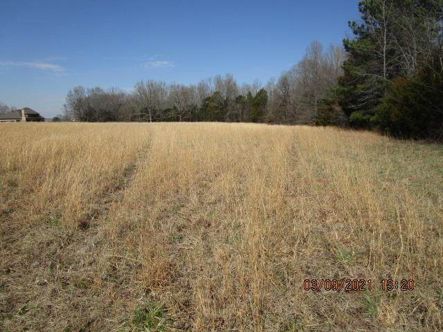 19+-ACRE Keating Road - Photo 1