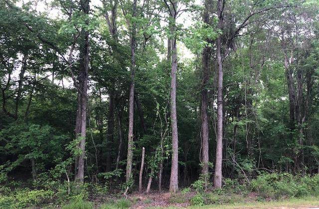 TBD Cr 418 Lot 4, OXFORD, MS 38655 (MLS #148080) :: Cannon Cleary McGraw