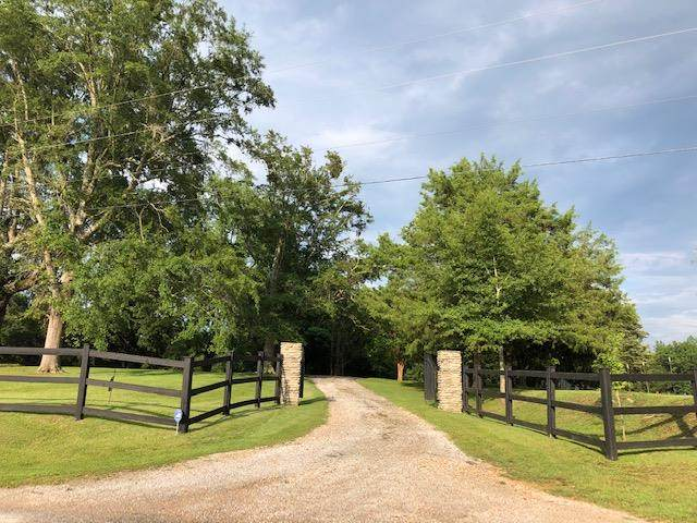 1287 Tocopola Junction Rd, THAXTON, MS 38871 (MLS #148660) :: Cannon Cleary McGraw