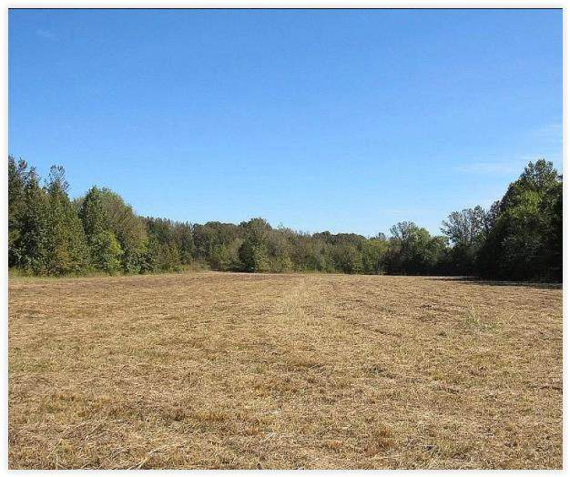 500 Henderson Rd, BATESVILLE, MS 38606 (MLS #149266) :: Cannon Cleary McGraw