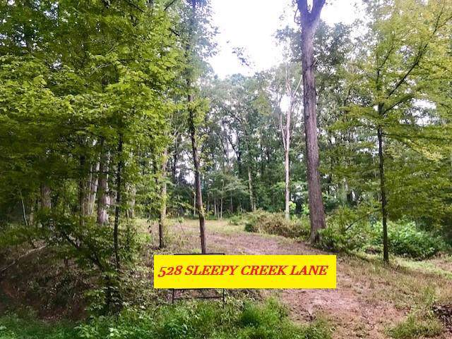 528 Sleepy Creek Lane - Photo 1