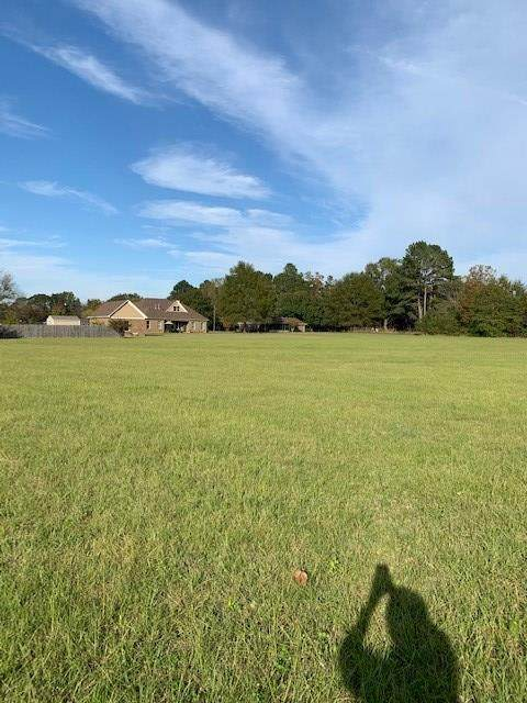 TBD Champion Circle, WATER VALLEY, MS 38965 (MLS #147016) :: Cannon Cleary McGraw