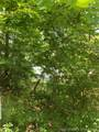 Ivy Crossing Road - Photo 1
