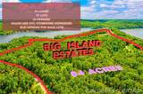 Entire Big Island And Island View Development - Photo 10