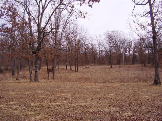 TBD Coffey Hollow, Macks Creek, MO 65786 (MLS #3500922) :: Coldwell Banker Lake Country