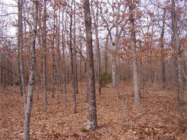 TBD Coffey Hollow, Macks Creek, MO 65786 (MLS #3500950) :: Coldwell Banker Lake Country