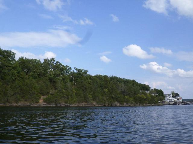 569 Port Niangua Lane, Camdenton, MO 65020 (MLS #3502251) :: Coldwell Banker Lake Country