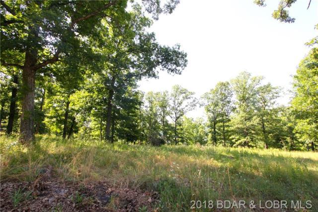 Spyglass Circle, Camdenton, MO 65020 (MLS #3505651) :: Coldwell Banker Lake Country