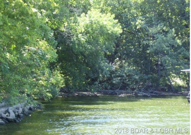 Wading Bird, Camdenton, MO 65020 (MLS #3507117) :: Coldwell Banker Lake Country