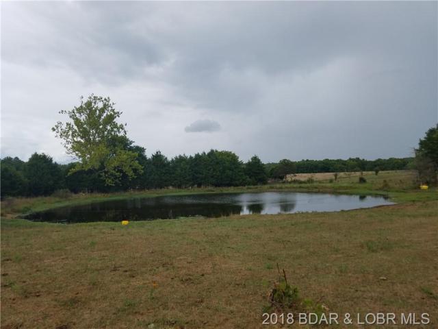 West Branch Road, Macks Creek, MO 65786 (MLS #3507309) :: Coldwell Banker Lake Country