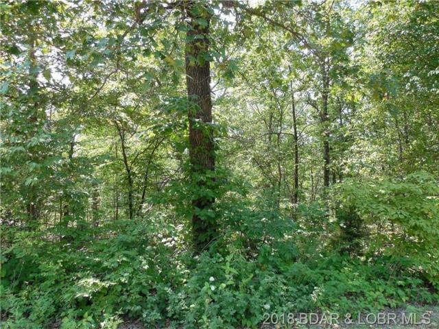 TBD Eagle Point Lane, Barnett, MO 65011 (MLS #3509182) :: Coldwell Banker Lake Country
